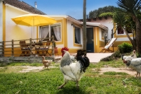 Farm Holidays Costa de Prata