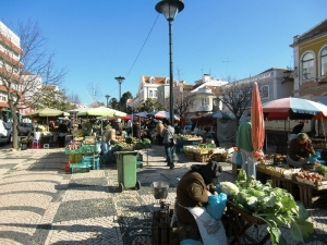 Markets in the area